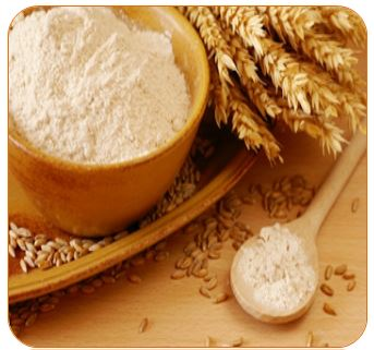 Processing of Wheat's into Flour