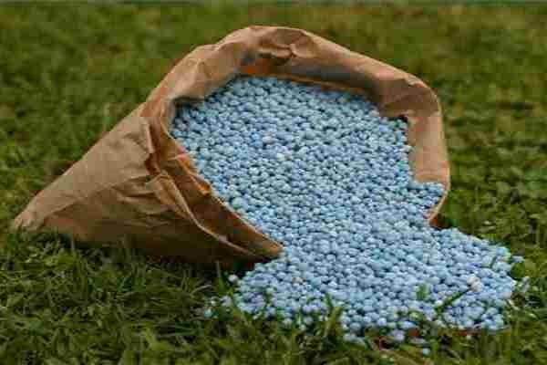 Fates of nitrate fertilizers use in agricultural soil