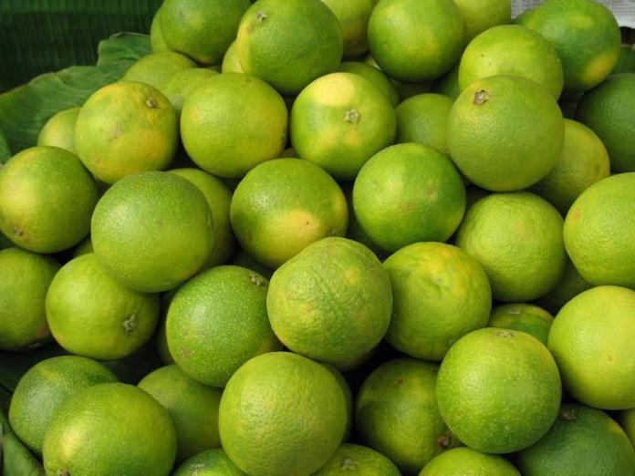 Miraculous Fruit, Sweet lime