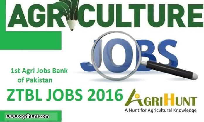 ZTBL Jobs 2016 (200+ Positions)