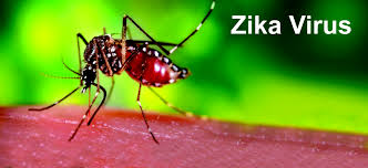 ZIKA VIRUS AND ITS CONTROL MEASURES