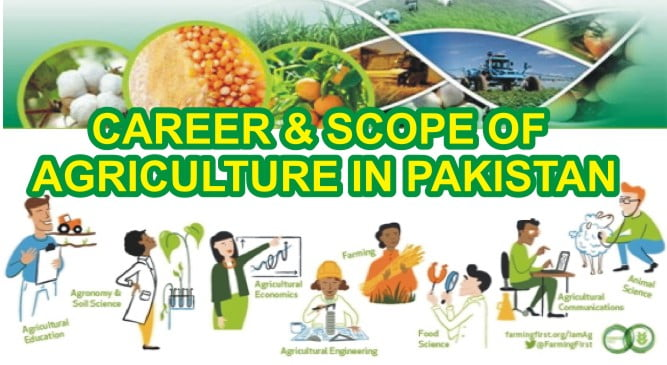 Career and Scope of Agriculture in Pakistan