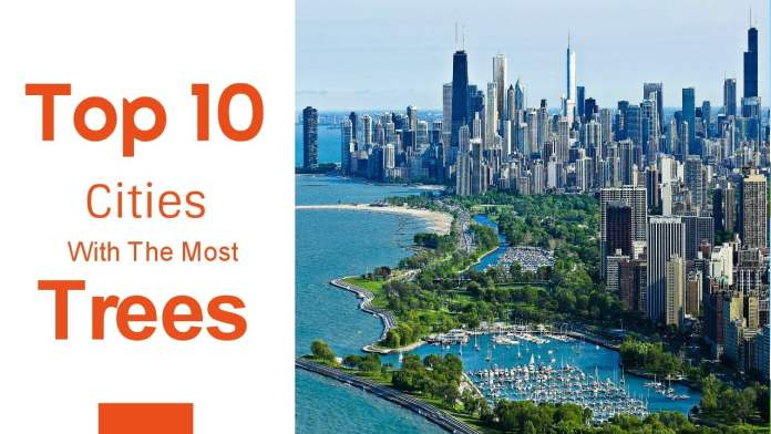 top-ten-cities-in-world-with-most-trees