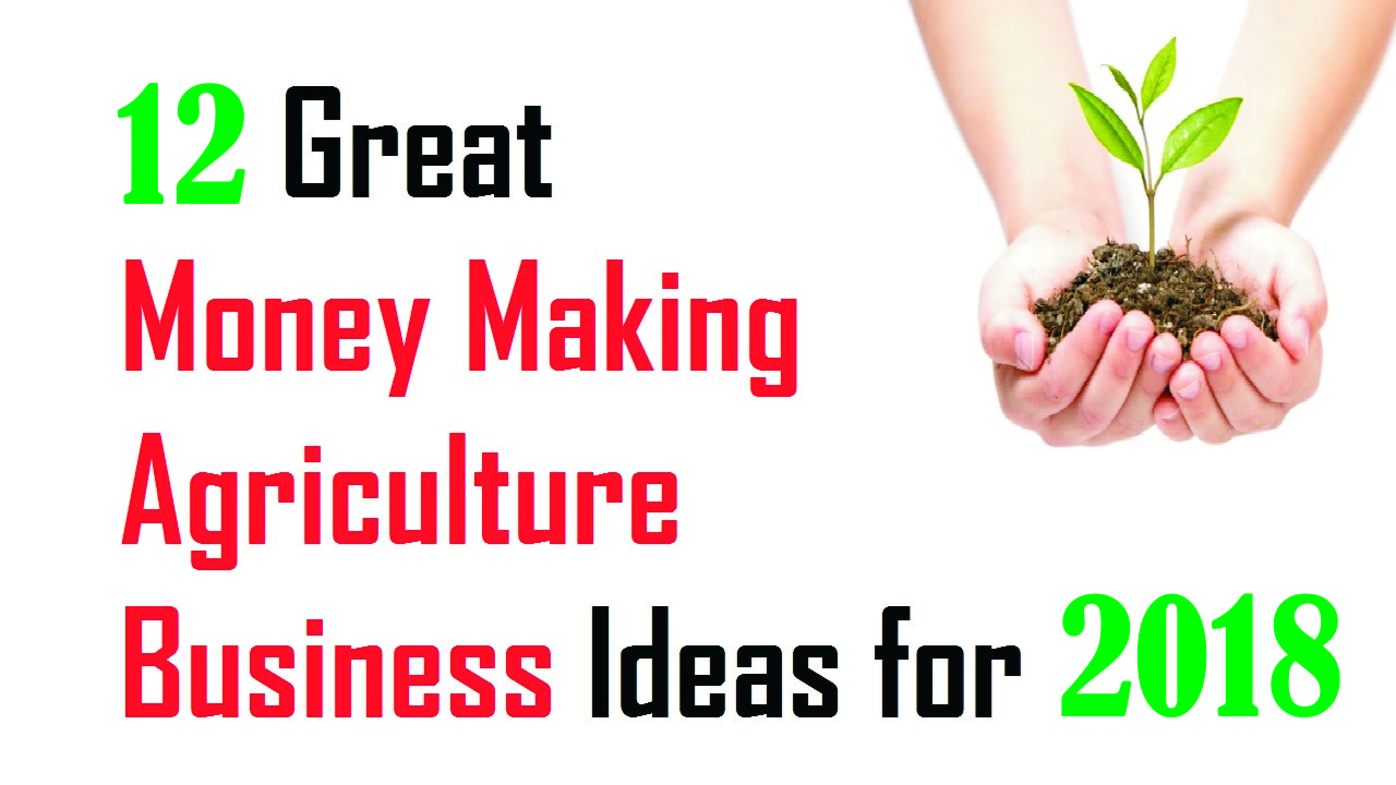 innovative business plan in pakistani