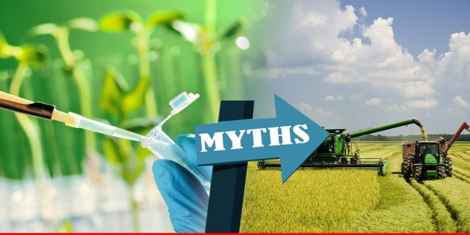 Three-big-myths-about-modern-agriculture