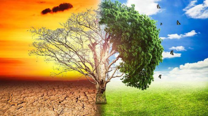Effect of climatic changes on agriculture