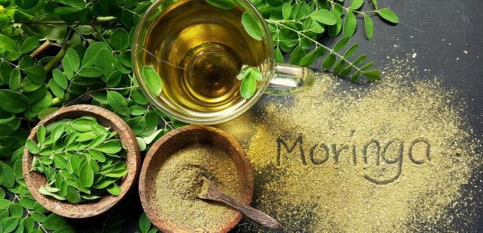 Moringa: a Marvelous Medicinal Plant
