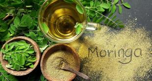 Moringa-superfood-why-is-moringa-good-for-health