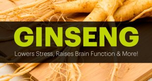 Astounding-Production-History-and-Health-Benefits-of-Ginseng-by-saad-ur-rehman