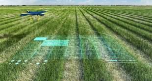 AI-agriculture-by-saad-ur-rehman-malik