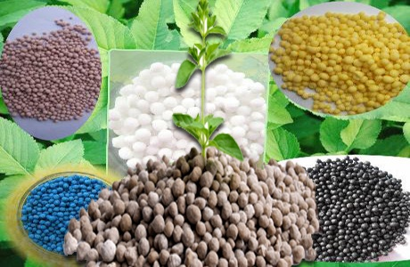 Fertilizers available in Pakistan