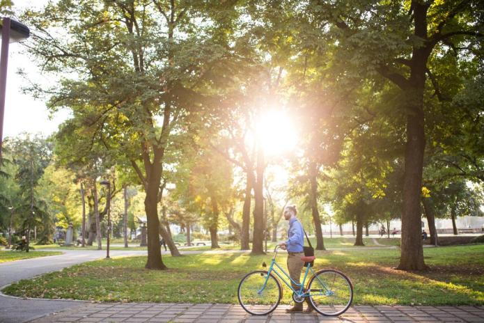 IMPACT OF GREEN SPACES IN URBAN AREAS