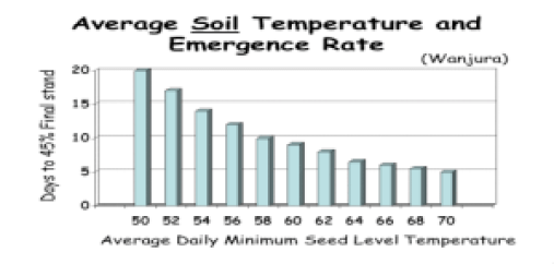 Average Soil Temp