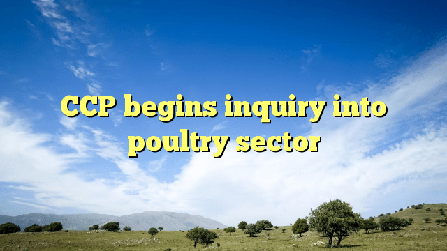 CCP begins inquiry into poultry sector