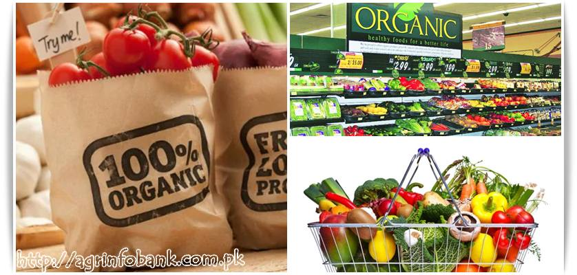 Organic Food Market Development in Central and Eastern European New Member States of European Union