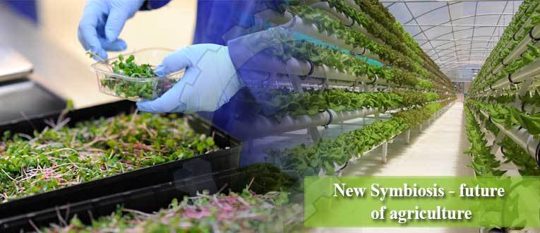 New Symbiosis – future of agriculture