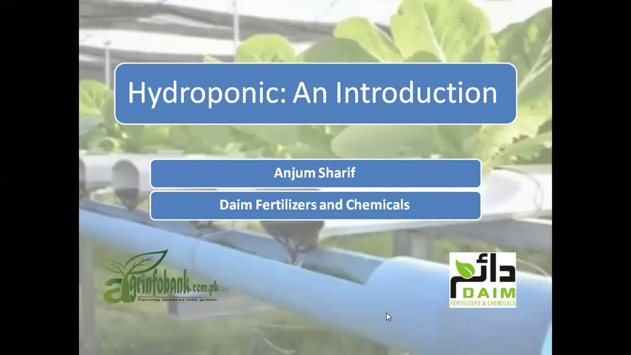 Hydroponics Training Introduction (First Lecture) By Anjum Sharif