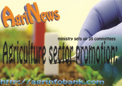 Agriculture sector promotion: ministry sets up 35 committee