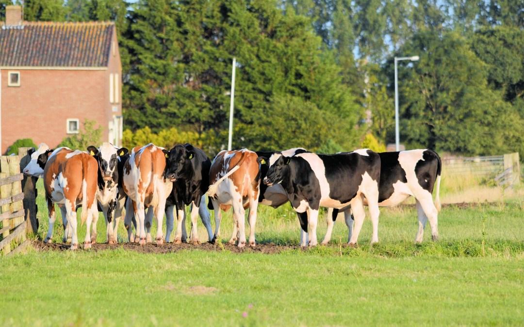 Harde aanpak fraudeurs stemt boeren tevreden