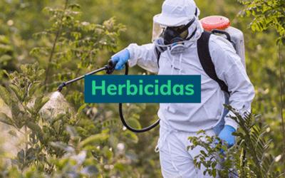 Herbicidas: guia completo com tudo o que você precisa saber!