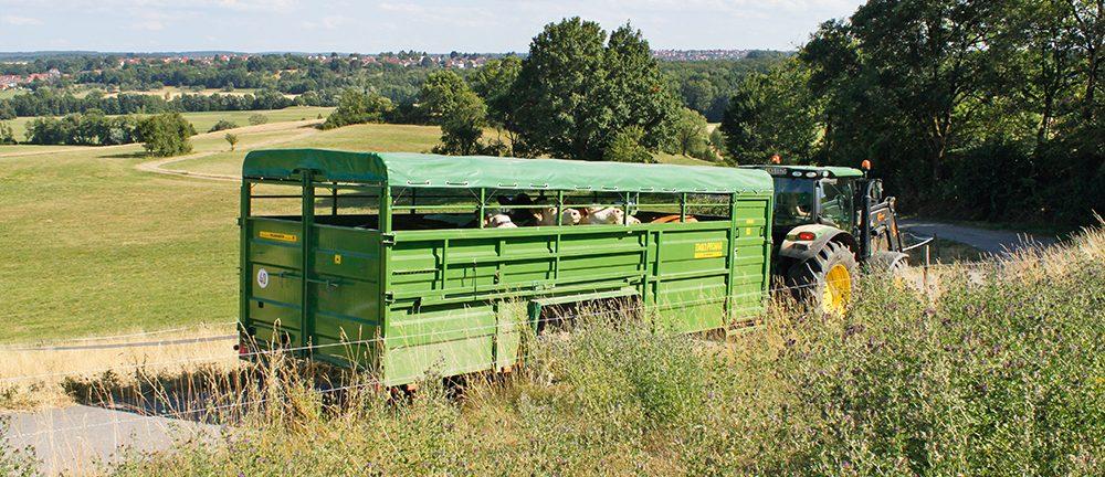 Pronar Kurier - de weidetaxi #Akkertest Agri Trader (2)
