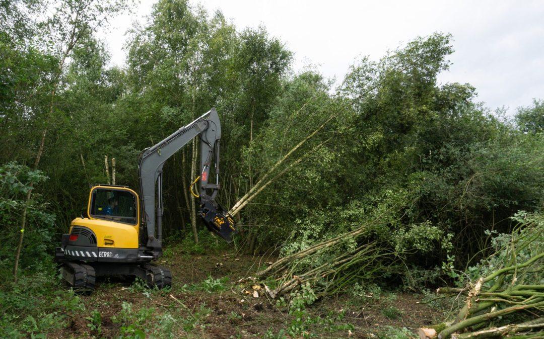 De vertakking - Klant van Bomenrooierij Roest in Lage Mierde - Agri Trader (5)