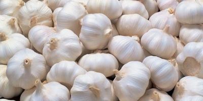 Garlic | Etim Healthcare