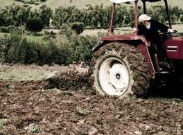tractor_grapa