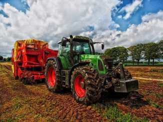 most-lucrative-agricultural-business-in-nigeria