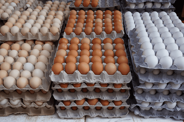 Chicken-eggs-in-crates-poultry-farming-for-beginners