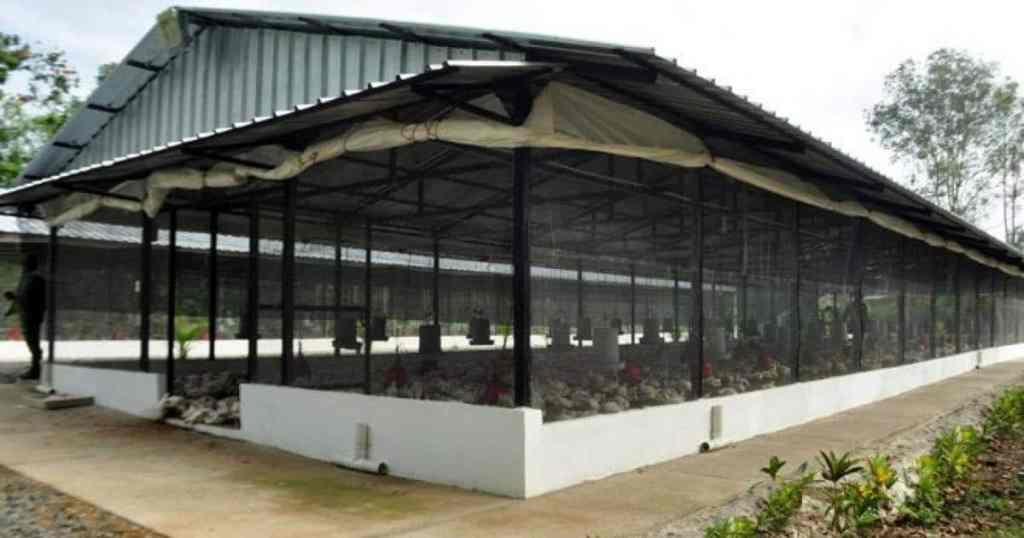commercial-poultry-housing-system