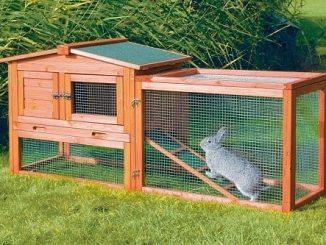 proper-rabbit-housing-system-1