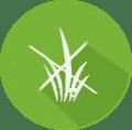АГРО + эффективное средство для уничтожения сорняков