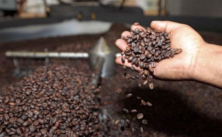 AgroAvances .:. Bolivia generó más de $us 7,5 millones por la exportación  de café el 2018