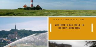 Agricultural Role in Nation Building