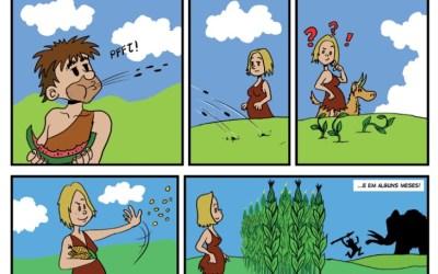 Dia mundial das mulheres – a agroecologia é feminista!