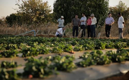 a agricultura familiar sead