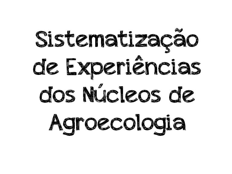 aaa imagerm Sistematização-de-Experiencias-768x576
