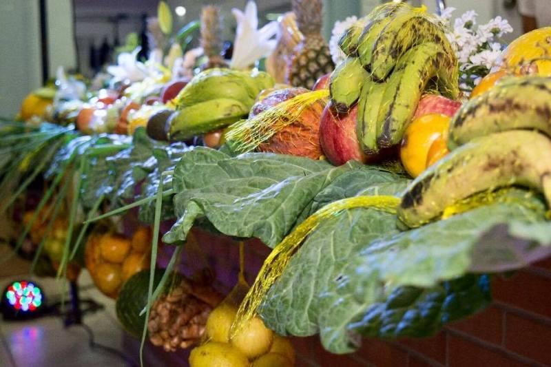frutas _ divulgacao sociedade organica