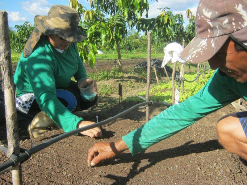 a agricultura familiar onu