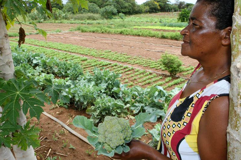 a mulheres rurais '1