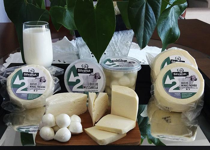 a - leite queijo