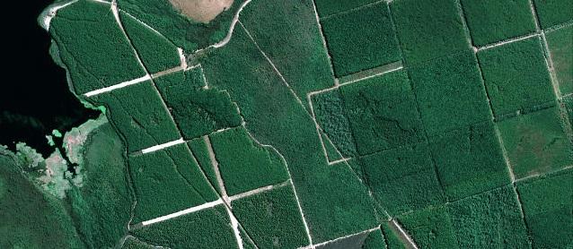 imagem satelite agro
