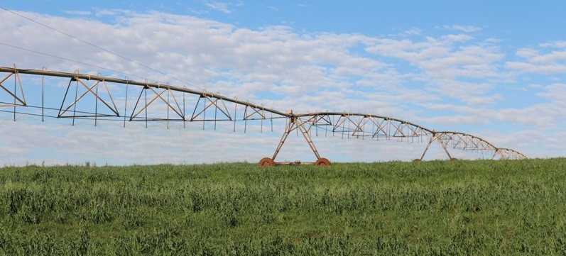 irrigacao reuso agua
