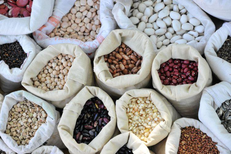 sementes-crioulas-agroecologia-usp-imagens
