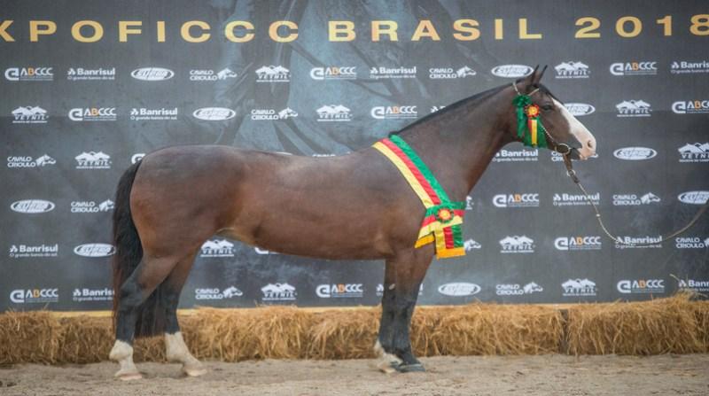 FICCC - Dinastia Cala Bassa - Crédito Fagner Almeida ABCCC Divulgação