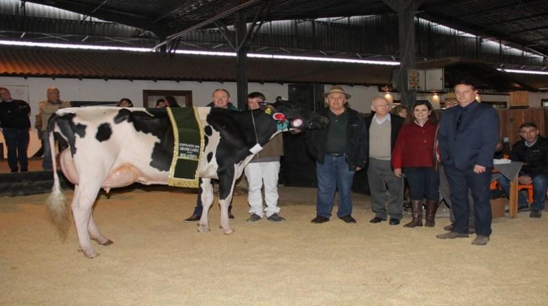 vaca premiada expoleite