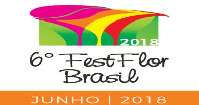DF: FestFlor Brasil apresenta novidades do mercado de flores em paisagismo