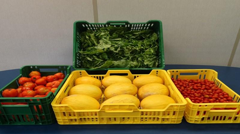 frutas hortaliças embrapa