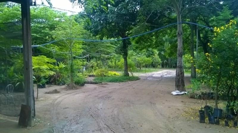 parque es 2